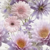 Декор CHINESE ASTERS FLOWER INSERTO декор2 594x600x11